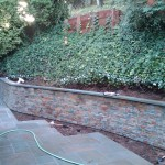 Belvedere Project After