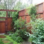 Sideyard Fence and Gate