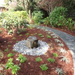 Shade garden and basalt water feature