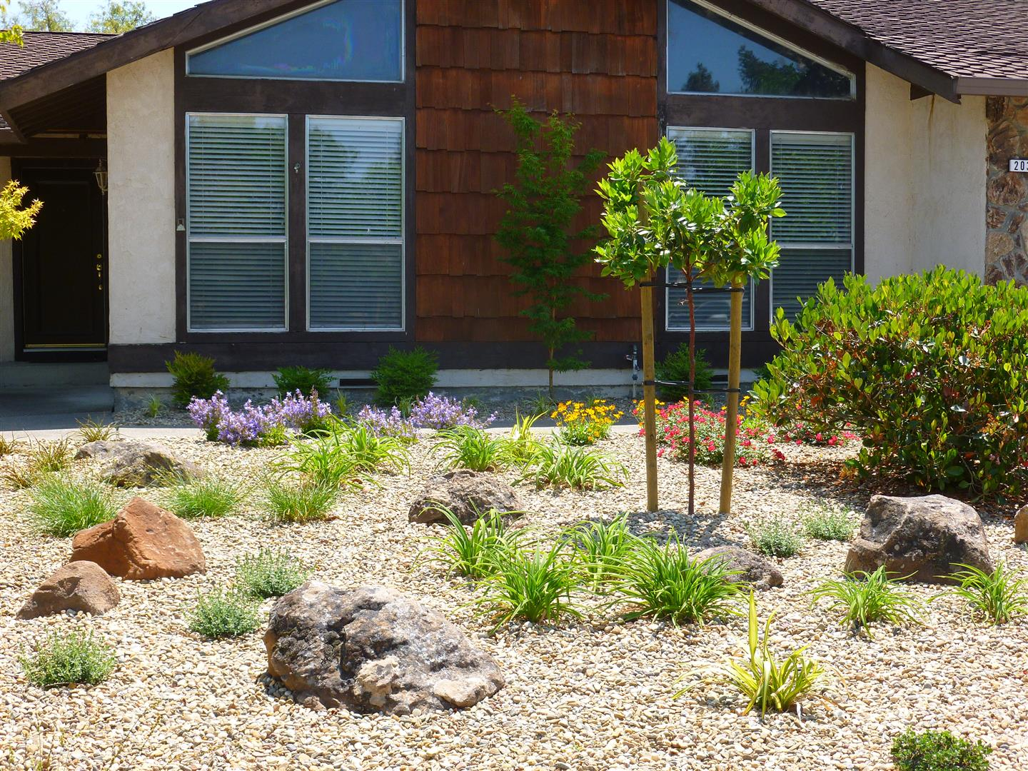 Landscaping Front Lawn Ideas Low Maintenance