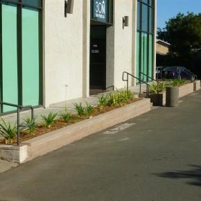 San Rafael Commercial Landscape Installation