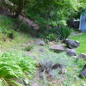 Before- existing streambed