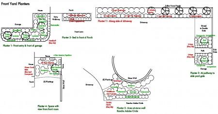 Planting details for relandscaping