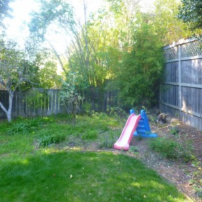 Before- Unusable Backyard