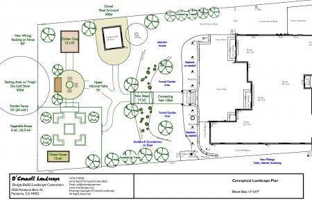 Cotati Concept Plan