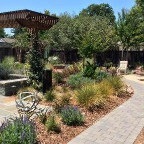 Paver pathway and plantings
