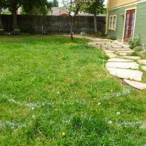 Before- undeveloped back yard
