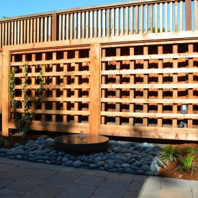 Petaluma Project- Custom Trellis