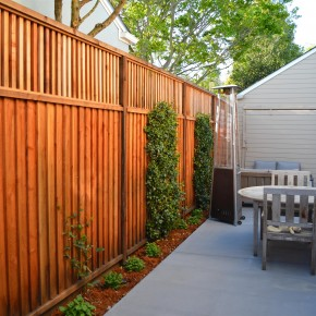 Petaluma Project- Redwood fence with Star Jasmine espaliers