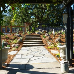 Cotati Bluestone Pathway