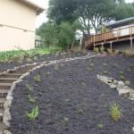 Petaluma Access Steps