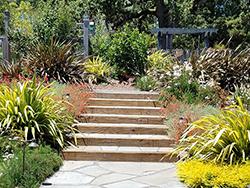 Cotati-Country-Style-Garden07
